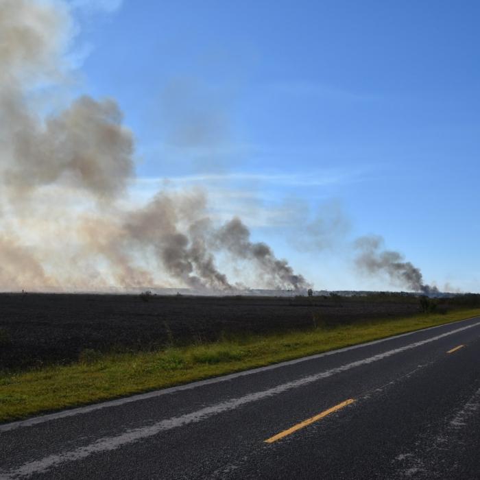 Everglades National Park Prescribed Burns